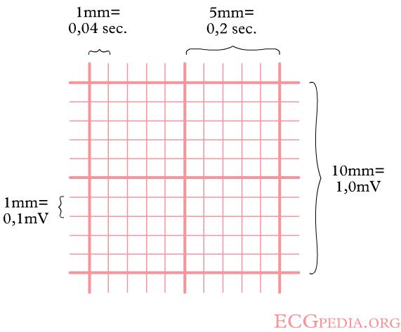 File:ECGpapier.png